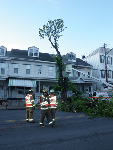 mahanoy city tree incident 5-8-2010 037.JPG