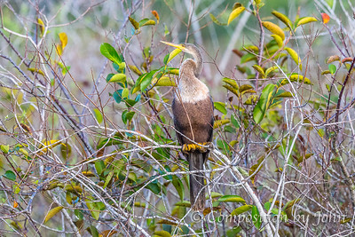 Biscayne National Park, FL