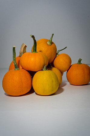 2011-10 - Pumpkins Sill Life