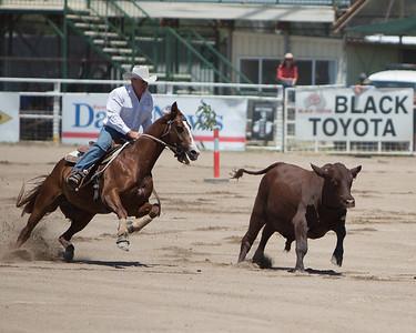 Warwick Rodeo 2013