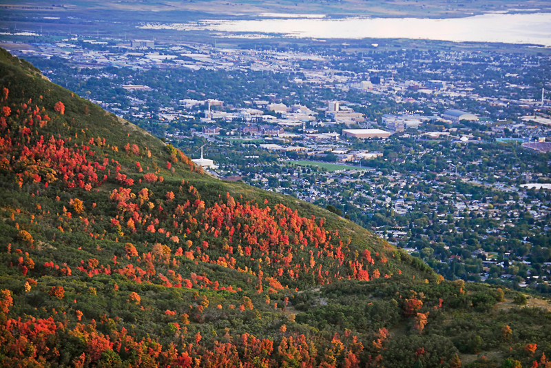 2011/10/4 – Check out the Maples going red while everything else is still lush green. This view looks over Utah Valley and specifically Provo, Utah with the Provo Temple near the center (white with spire). The light was really too low to shoot this shot handheld, so this was the best I could get.
