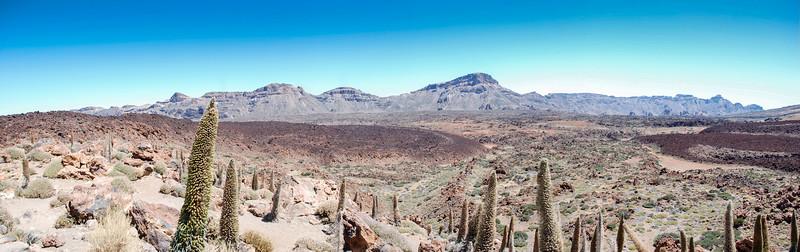 Tenerife Panorama, Canary Islands, Spain