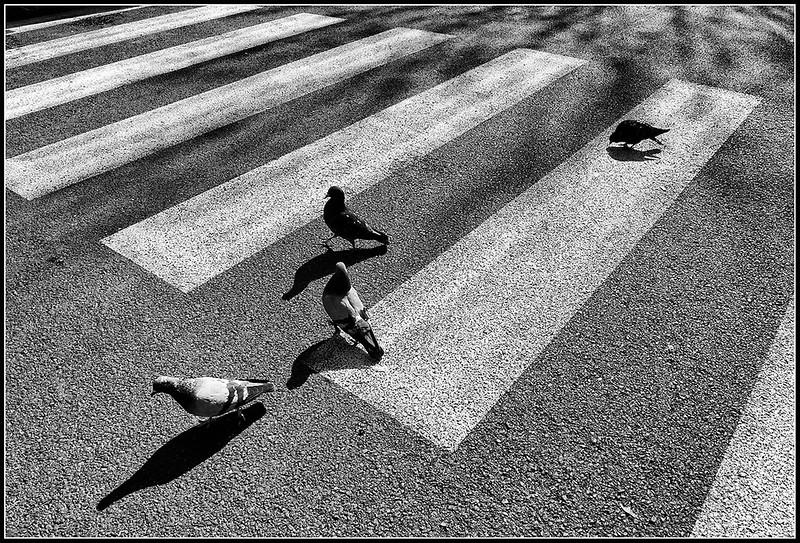 2010-03-Firenze-273.jpg