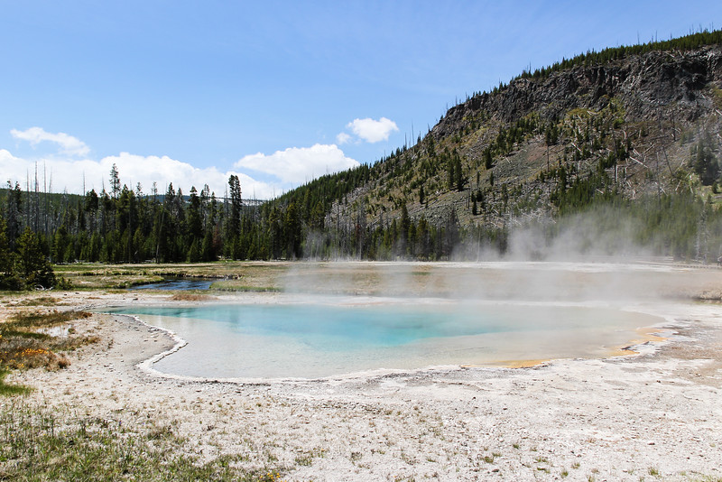 Green Spring - Yellowstone National Park