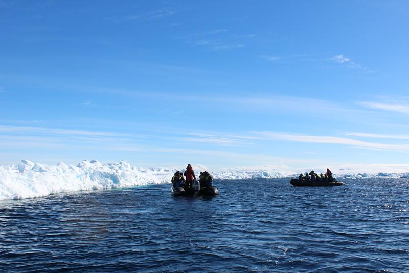 Antarctica 016.JPG