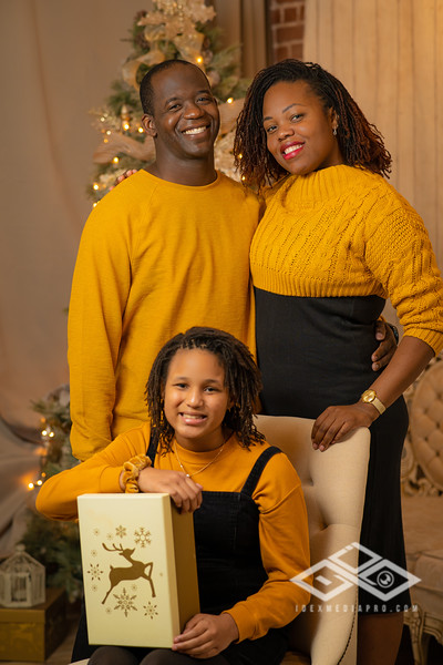 Holiday Minis 2020-06841.JPG