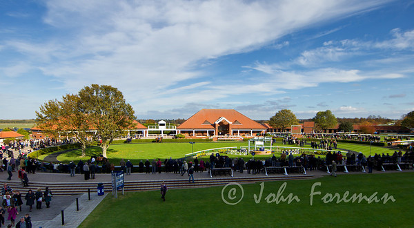 Newmarket Autumn Raceday 2011