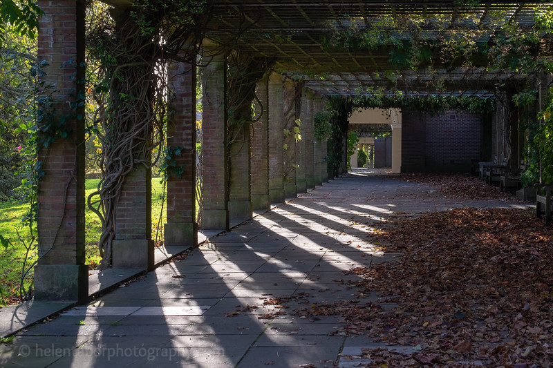 Valley Gardens Oct 18-31.jpg