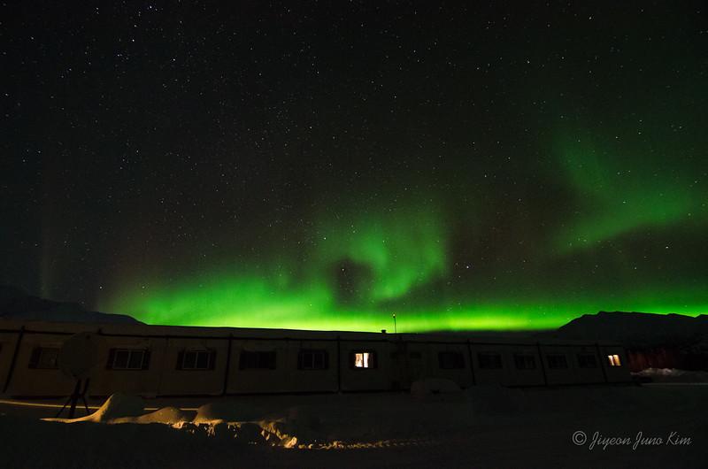 USA-Alaska-Coldfoot-Aurora-3362.jpg