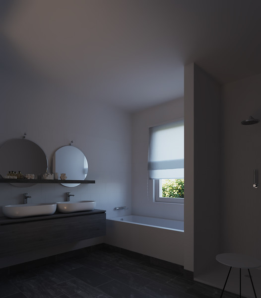 velux-gallery-bathroom-009.jpg