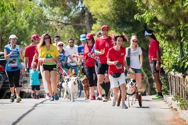 10 July 2016 | Penny Marathon Athens 2016