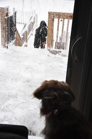 Kayla - Snow