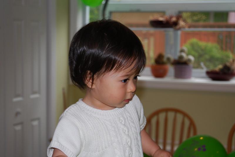 Alisa's 1st Birthday