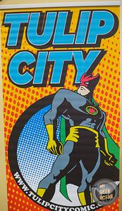 Tulip City Comics & Toy Fare 2019