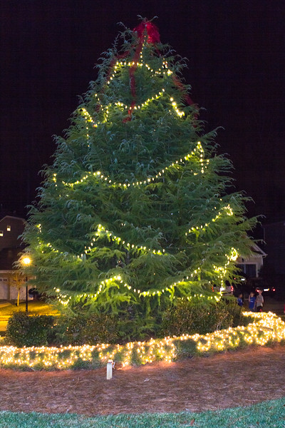 Riverbend Tree Lighting 2013