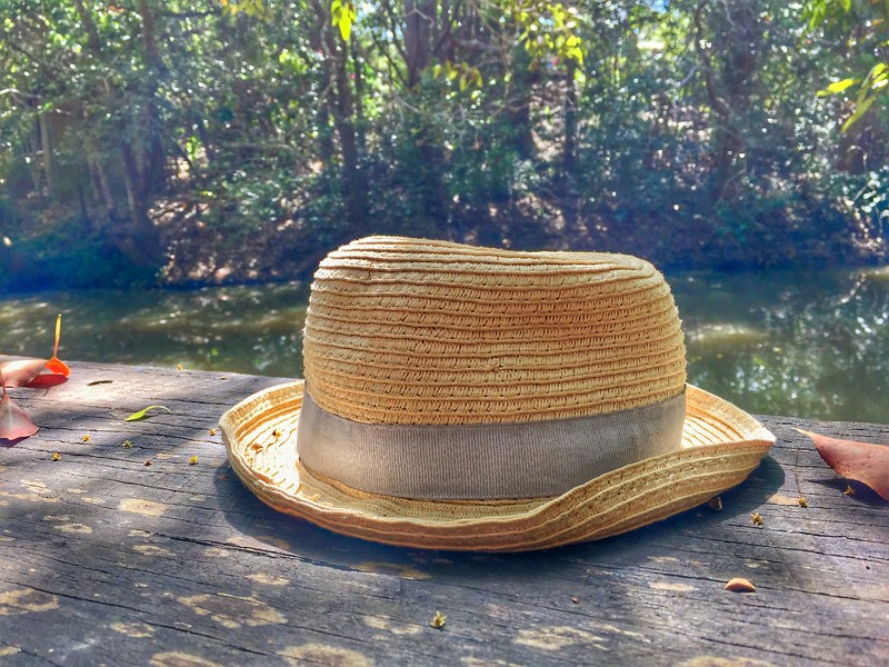 The Hat_7.jpeg
