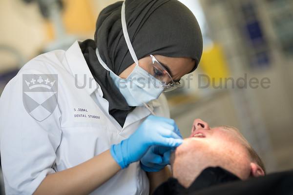 School of Dentistry