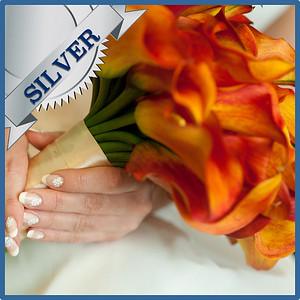 92103 Bridesbouquet Silver