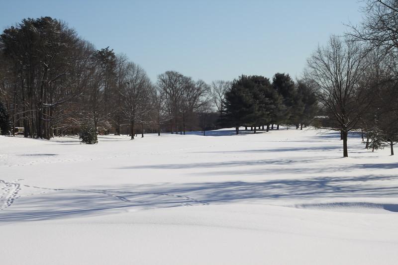 Snowmageddon 2010-5.jpg