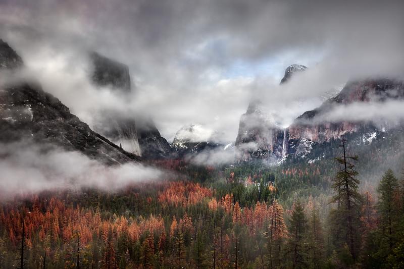 Yosemite valley fog 4.jpg