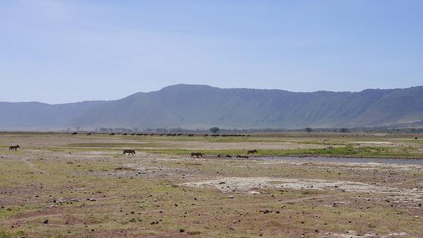13 Ngorongoro Crater