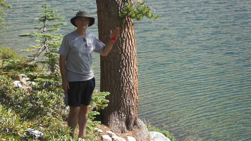 sequoia 098.JPG