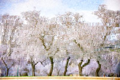 Cherry Blossom Sets