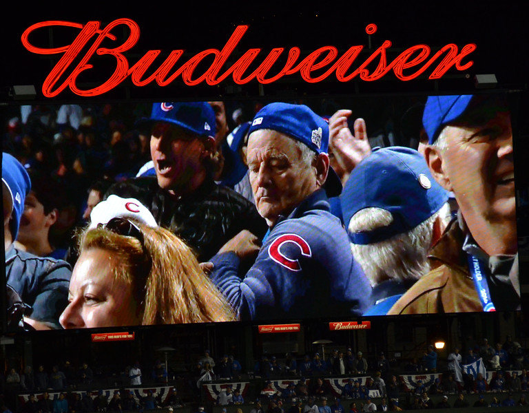 The unofficial mascot of the Cubs playoff run.
