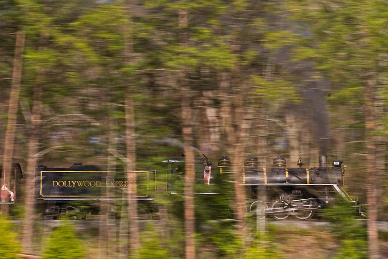 IMG_7536-dollywood-70-woods=pan.jpg