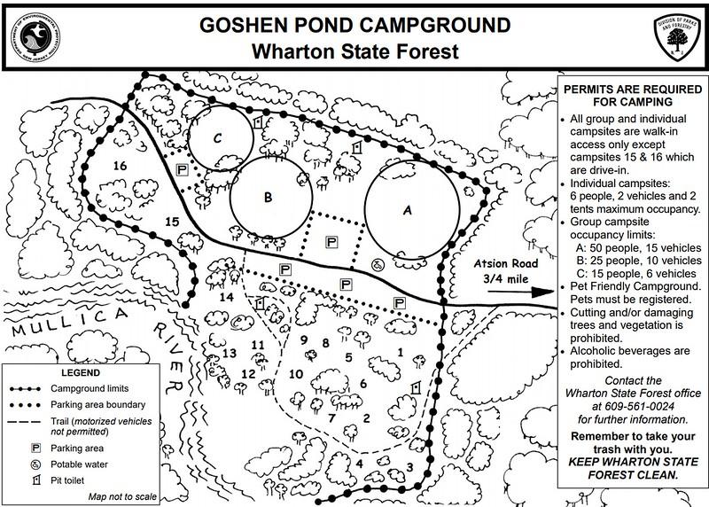 Wharton State Forest (Goshen Pond Campground)