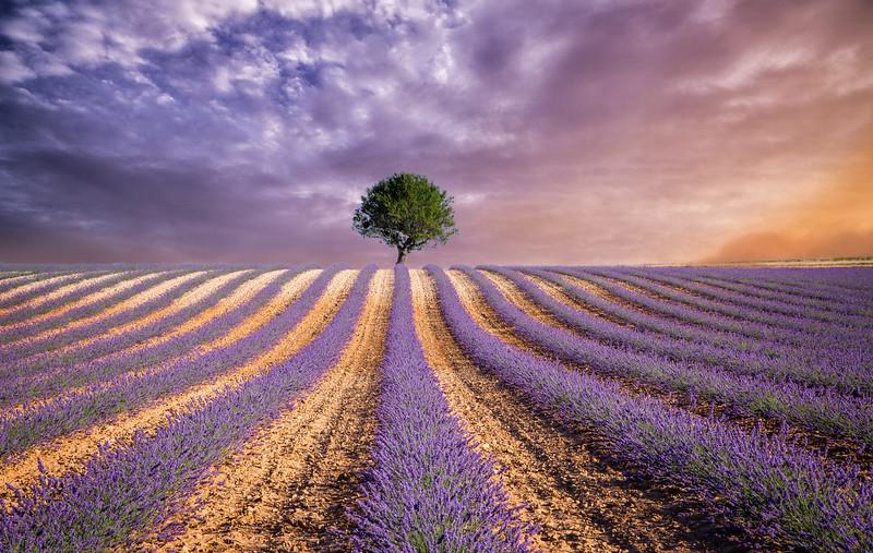 Provence new sky 2.jpg