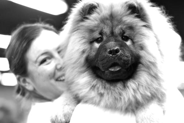 Rose City Classic Dog Show