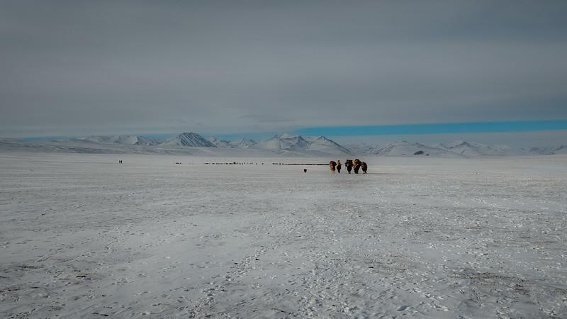 Mongolia - 2020 -19.jpg