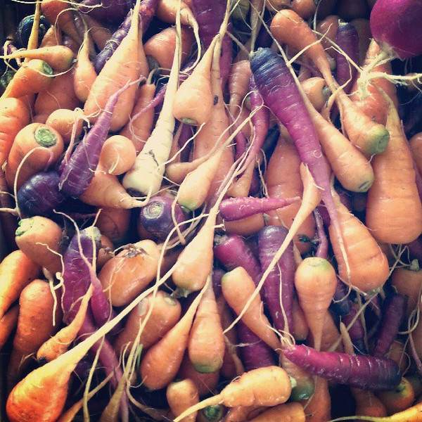 Gorgeous_carrots_straight_from_Hoopono_Farm_at__MauiAg_Fest..jpg