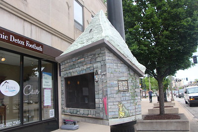 La Grange Little Libraries