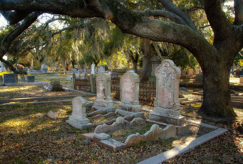 In the afternoon of the first day we went out to Magnolia Cemetery.  This was a beautiful cemetery with the beautiful old trees and grave stones that dated back to the 1700s.
