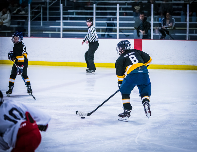 Bruins2-93.jpg