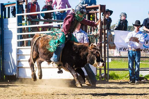 AK Bucking Bulls - January 2019