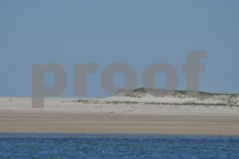 Pictues from cape and father day 045.JPG