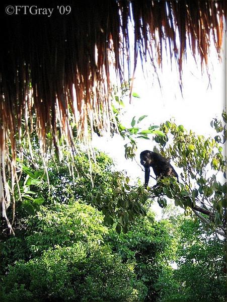 Summer Solstice, 2009; Yucatan