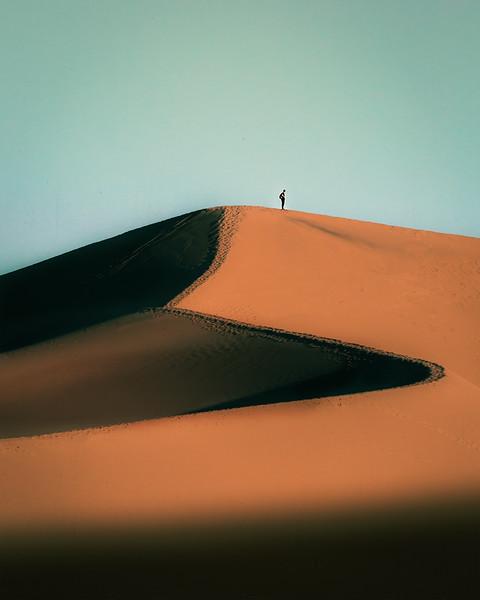 Desert LG.jpg