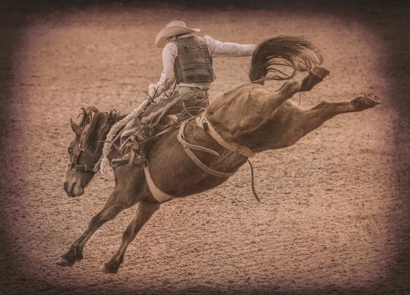 Arcadia, Florida - Arcadia All-Florida Chamnpionship Rodeo 2016