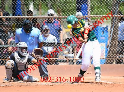 5-11-19 - Canyon del Oro vs. Cactus (AIA 4A Semifinal) Softball