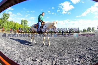 Sr Rider Equitation 9/12/20