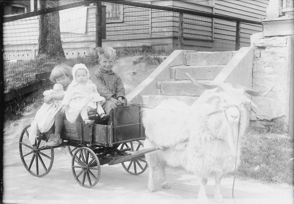 . Continues BEVERLY of St. Paul: �The other picture is of me (Beverly, with the doll), my younger sister Jeannine, and my older brother Bobby. The picture was taken in 1928. I was told the photographer carried the doll with him for the girls to hold � and I�m sure I didn�t want to give it up, as I never owned one. No money for a doll in our family.�