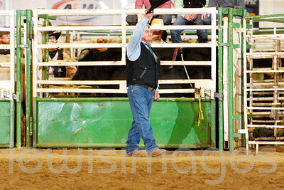 2012 Misc. Rodeo Proofs