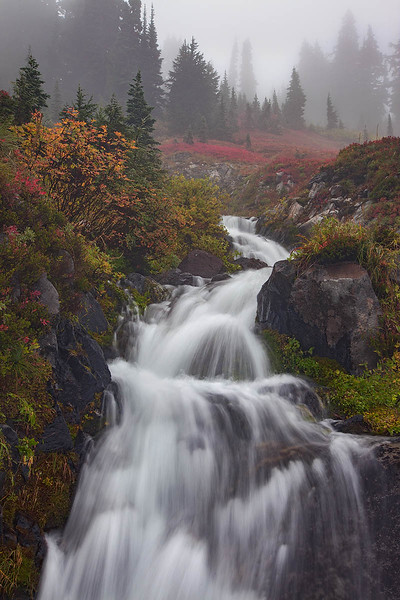 Ephemeral Autumn Creek