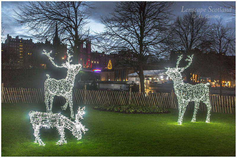 Reindeer Christmas decorations in Princes Street Gardens