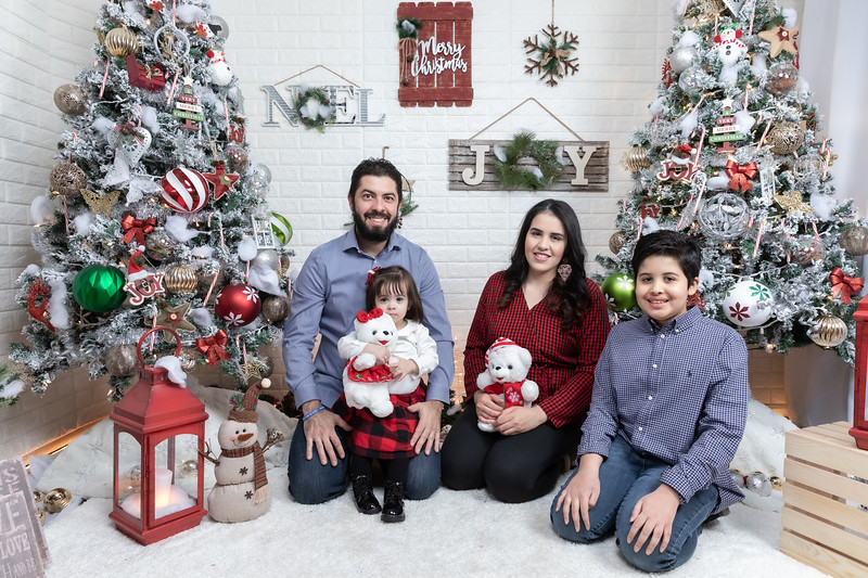 12.21.19 - Fernanda's Christmas Photo Session 2019 - -8.jpg