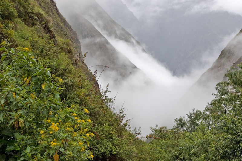1026_Inca_Trail.jpg